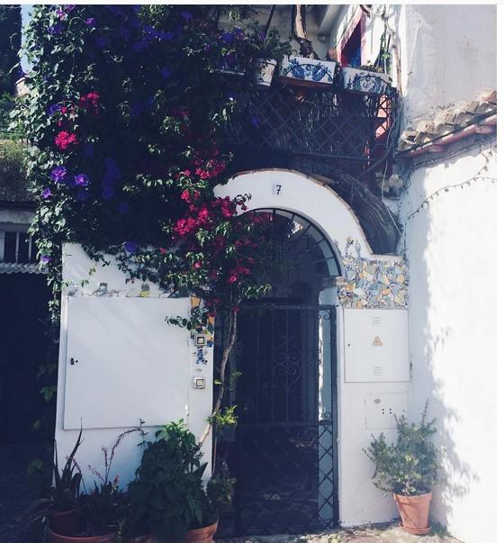 granada-flowers